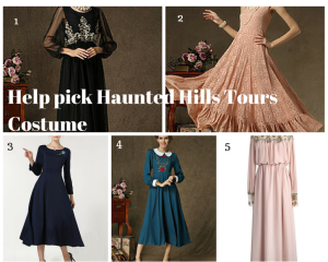 Haunted Hills Costume, 1910's dress, 1920's dress,