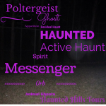 poltergeists, ghosts, residual haunt, haunted, active haunt, messenger, spirit, orb, animal ghost