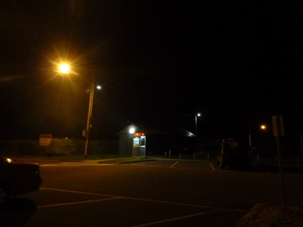 Lions Park at night