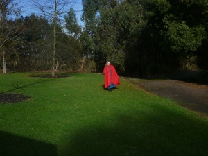 red cape, jacket, wrap, shawl, covering,  overdress